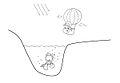 Drawinggiuliavarale2.jpg