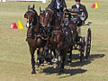 Dressage Driving at the World Equestrian Games 2010 (5118469766).jpg