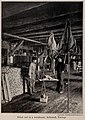 Dried cod in a warehouse, Aalesund, Norway, photo from The Encyclopedia of Food by Artemas Ward.jpg