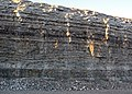 Dundee Limestone over Lucas Dolomite (Middle Devonian; Auglaize Quarry, near Junction, Ohio, USA) 5 (48889180297).jpg
