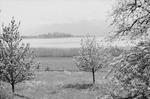 ETH-BIB-Rapperswil-Inlandflüge-LBS MH05-82-06.tif