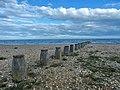 Eastbourne - panoramio (65).jpg