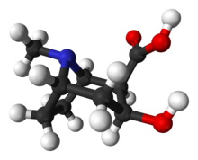 Ball-and-stick model of the ecgonine molecule