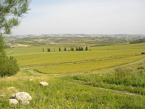 Valley of Elah - Extension of Elah Valley on its southeastern side, Wadi es Sur