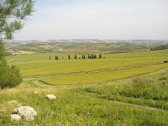 Valley of Elah - Extension of Elah Valley on its southeastern side, Wadi es Sur
