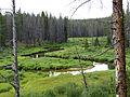 Elk Creek (15383595572).jpg