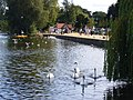 Ellesmere UK - panoramio - Tanya Dedyukhina (2).jpg