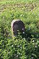 Eltville Oberwalluf (Außerhalb 8 1) Gemarkungsgrenzstein.jpg