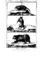 Encyclopedie volume 5-039.png