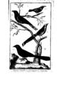 Encyclopedie volume 5-076.png