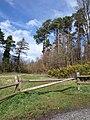 Entrance to track near Beggar's Bush - geograph.org.uk - 748451.jpg