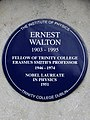 Ernest Walton 1903-1995 Fellow of Trinity College Erasmus Smith's Professor 1946-1974 Nobel Laureate in Physics 1951.jpg