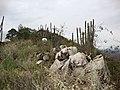 Esse é o sertão baiano - panoramio (1).jpg
