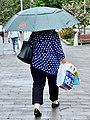 Essential shopping during the COVID-19 pandemic in Brisbane, Australia, Jan 2021.jpg