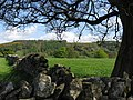 Eyam - Tideswell Lane - view to Eyam Edge - geograph.org.uk - 1283355.jpg