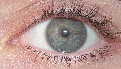 Eyeball Blue.jpg