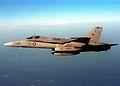 F-18C VA-83 CAG CVW-17.jpg