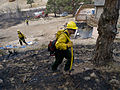FEMA - 39761 - Firefighters in Colorado.jpg