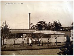 Fábrica de Alpargatas en Barracas, c. 1920.