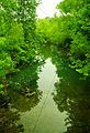 Falling-water-river-poplar-grove-tn1.jpg
