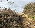 Farm track doubling as public footpath - geograph.org.uk - 1203345.jpg