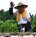 Farmer Waving - Outside Furano - Hokkaido - Japan (48012215851).jpg