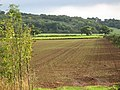 Farmland near Harston, Leicestershire - geograph.org.uk - 67680.jpg