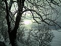 February Winter Light Glottertal - Mythos Black Forest Photography 2013 - panoramio (12).jpg