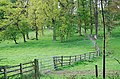 Fence line by Balcarres - geograph.org.uk - 426223.jpg