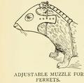 Ferret muzzle 2.png