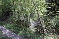 Feuchtgebiet Oberholz I 02.jpg
