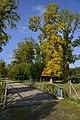 Feuillage dorée près du pont en bois (23402682886).jpg