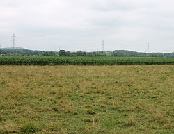 Field in Madison Township