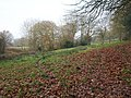 Field on Wellington Hill - geograph.org.uk - 1692362.jpg