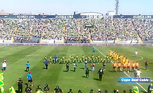 Sport Áncash - Sport Áncash lost the 2016 play-off match final against Academia Cantolao at Estadio Alejandro Villanueva for the Segunda División title.