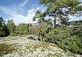 Finland - panoramio (16).jpg