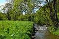 Fischbach 03 28.05.19.jpg