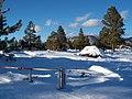 Flagstaff Buffalo Park snow.jpg
