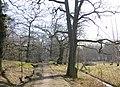 Flatens naturreservat 2007.JPG