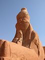 Flickr - archer10 (Dennis) - Egypt-9A-023.jpg