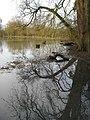 Floodplain of the River Cherwell - geograph.org.uk - 1177508.jpg