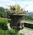 Flowerpot - panoramio.jpg