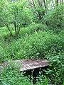 Footbridge in The Warren - geograph.org.uk - 1309112.jpg