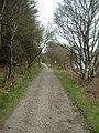 Footpath from Sannox to the Fallen Rocks, Arran - geograph.org.uk - 31534.jpg