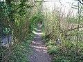 Footpath parallel to Hollow Lane - geograph.org.uk - 1245199.jpg