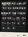 Ford B1119 NLGRF photo contact sheet (1976-08-18)(Gerald Ford Library).jpg