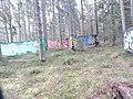 Forest graffiti near Härnösand.jpg