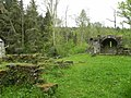 Foret de Bonneval, Vosges, France - panoramio (16).jpg