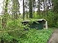 Foret de Bonneval, Vosges, France - panoramio (17).jpg