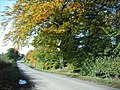 Foulburn Road - geograph.org.uk - 1538828.jpg